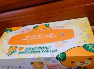 エリエールティシュー嵐カラー02 2015-11-14 19.20.59